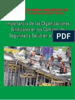 142440572-ANALISIS-DE-LA-LEY-29783-Y-REGLAMENTO-SST-pdf.pdf