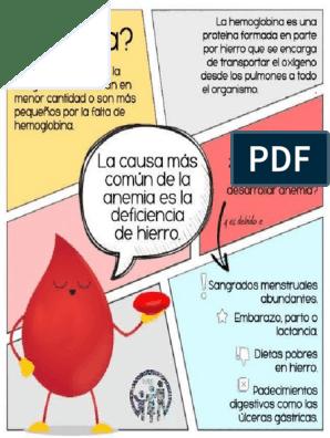 Dieta de hierro pdf