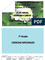 Plan Anual 7mo. Grado.pdf