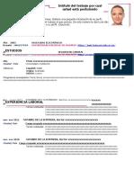 Curriculum Vitae Academico Morado