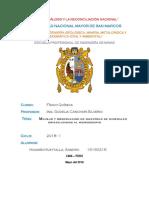 Manejo y Observacion de Muestras de Minerales Informe