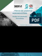 10 - GUILHERME MACARIO - Perdas nas atividades ferroviárias.pdf