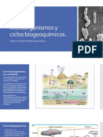 Microbiologiapresent Ciclos Biogeoquimicos Microor
