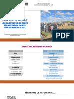 PESCS (14-15 junio 2018).pptx