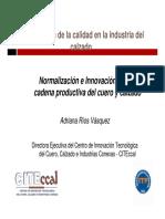 t023600005306-0-Normalizacion e Innovacion en La Cadena Productiva Del Cuero y Calzado - Adriana Rios