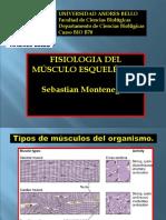 Psicologia del musculo esqueletico