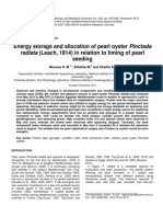 Energy Storage and Allocation of Pearl Oyster Pinctada Radiata (Leach, 1814) in Relation to Timing of Pearl Seeding