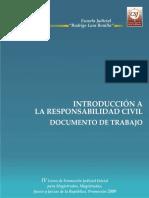53046517-223-09-Induccion-a-La-Responsabilidad-Civil.pdf