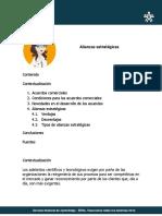 3. Alianzas estratégicas.pdf