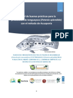 2.2 3 Reconversion Tilapia Siankan Manual Buenas Practicas