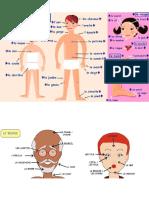 la cara y las partes del cuerpo.pptx
