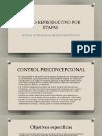 2 RIESGO REPRODUCTIVO POR ETAPAS (T) (1).pptx
