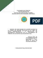 105-Tesis-SISTEMA DE INDICADORES DE GESTI+ôN BASADO EN LA NORMA ISO 9001.pdf
