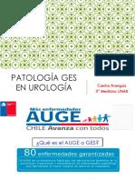 Ges Urologia 1