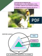 ( 11 ) Final Concepto de Organico.ppt