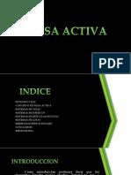 216268127 Exposicion Seccion Activa