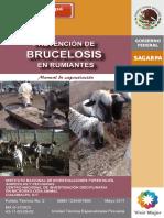 2 MANUAL BRUCELOSIS.pdf