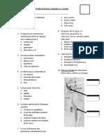 examen 6