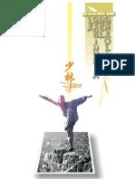 kung fu_la sabiduría del shaolin