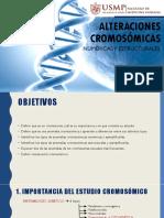 Seminario Nº 12 Alteraciones Cromosómicas Numéricas y Estructurales.