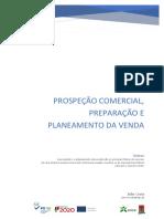 Prospeção Comercial Preparação e Planeamento Da Venda - Manual