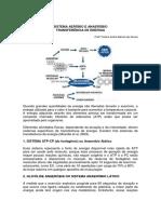 sistema-aerobio-e-anaerobio-transferencia-de-energia.pdf
