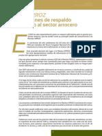 arroz500.pdf protocolos.pdf