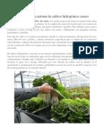 Cómo Hacer Un Sistema de Cultivo Hidropónico Casero
