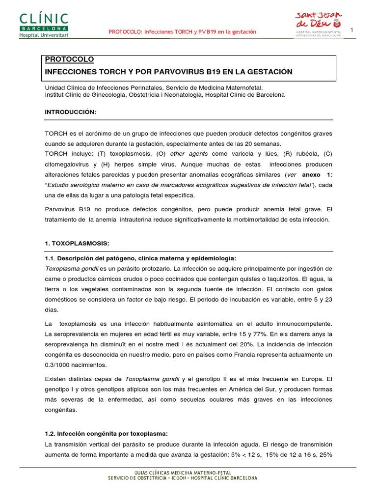 infecciones congenitas torch pdf