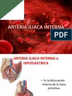 Arteria Iliaca Interna