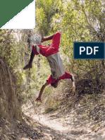 MEIRELES, R. Território_do_Brincar_-_Diálogo_com_Escolas-Livro.pdf