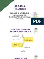 Dna _ Rna Metabolism
