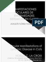 Manifestaciones Oculares de Enfermedades Sitemicas en Gatos