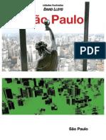 Cidades Ilustradas Sao Paulo