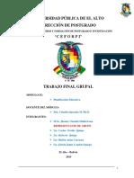 TRABAJO-FINAL-GRUPAL (1).pdf