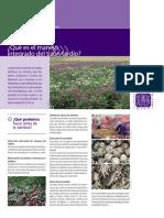 03. Qué es un fungicida CIP.pdf