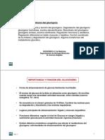 11metabolismodelglucgeno-110413174318-phpapp01.pdf