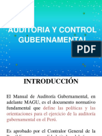 8. Auditoria y Control de La Gestion