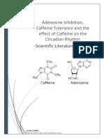 Adenosine Inhibition, Caffeine Tolerance and the effect of Caffeine on the Circadian Rhythm