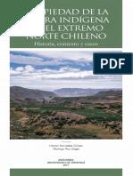 GONZALEZ y RUZ 2017 Propiedad tierra indígena extremo norte chileno.pdf