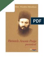 Parintele Arsenie Praja Pustnicul
