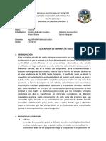 descripciondeunperfildesuelo-130630144131-phpapp01.docx