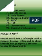Respirator pneumo