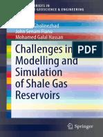 (SpringerBriefs in Petroleum Geoscience &Amp_ Engineering) Jebraeel GholinezhadJohn Senam FianuMohamed Galal Hassan (Auth.)