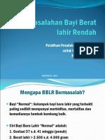 1-masalah-bblr-2011