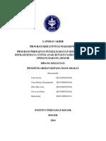 PKM M Puzzle Kabayan LaporanAkhir H14100028