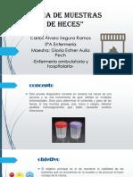 364105930-Toma-de-Muestras-de-Heces.pdf