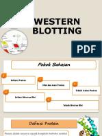 9. Western Bloting