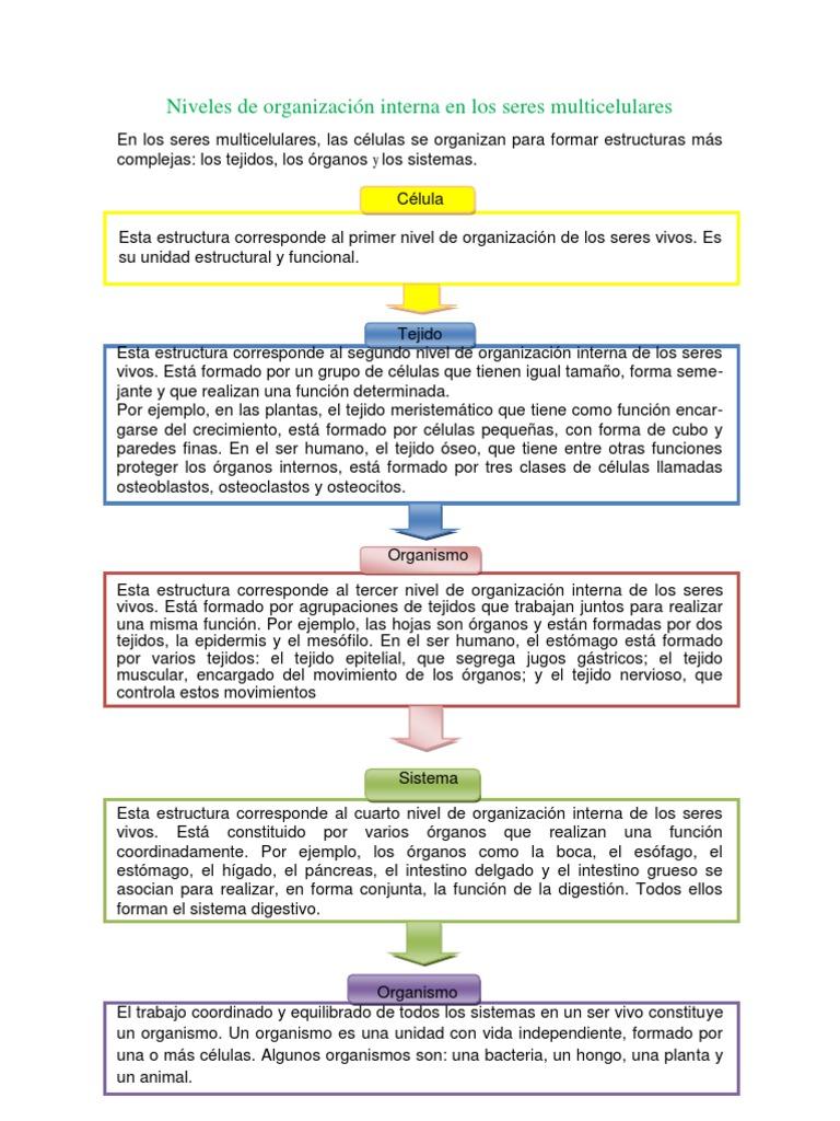Nivel celular pdf download