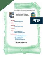316365614-informe-6.docx